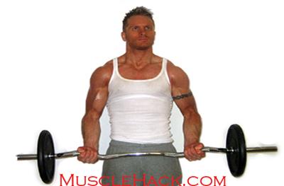 Build Big Biceps