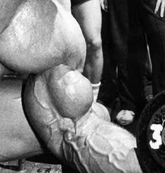 The 1 Simple Rule To Build Massive Muscle