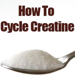 Creatine Cycling