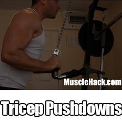 Tricep Pushdowns