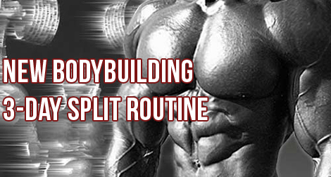 T.H.T. 3 Day Split Workout For Fast Gains