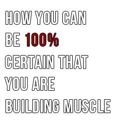 certainty-in-bodybuilding