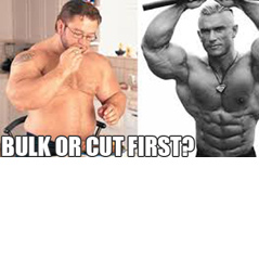 Should I Bulk or Cut First?