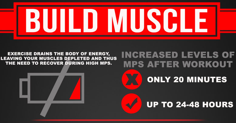 Infographic On How To Build Muscle