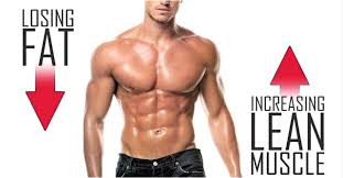 Proof That You Can Build Muscle & Lose Fat At The Same Time