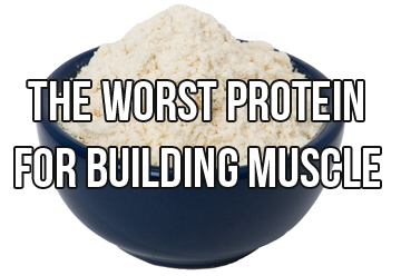 The Worst Dang Protein For Building Muscle