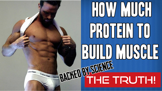 HOW MUCH PROTEIN TO BUILD MUSCLE FAST (2020)